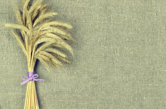 Sheaf of wheat ears on linen canvas  background. Harvest concept. Sheaf of wheat ears on linen canvas background. Harvest concept Stock Image