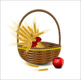 Sheaf of wheat ears in a wicker basket with red apples Royalty Free Stock Images