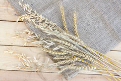 Sheaf of wheat and oat on wooden background Stock Photo