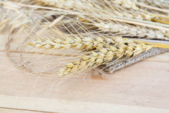 Sheaf of wheat and oat on wooden background Royalty Free Stock Photos