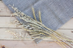 Sheaf of wheat and oat on wooden background Stock Images