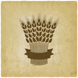 Sheaf of wheat with ribbon vintage background Stock Image