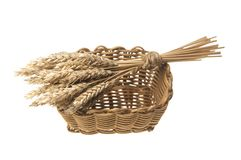 Sheaf of wheat in a wicker basket. Isolated on white Royalty Free Stock Photo