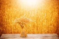 sheaf on wooden table Stock Image