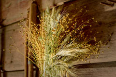 Sheaps of wheat and herbs in the shed Royalty Free Stock Images