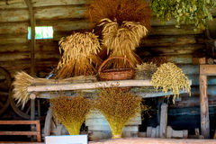 Sheaps of wheat and herbs in the shed of a village Stock Images