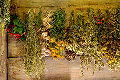 Sheaps of wheat and herbs in the shed Stock Photos
