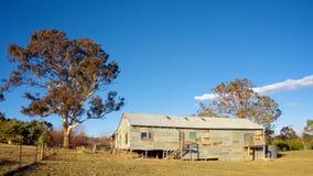 Shearing cakle w wiejski Australia fotografia stock