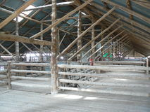 Shearing shed in outback Australia, view from inside. Stock Photos