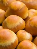 Sheathed woodtuft. (Kuehneromyces mutabilis) mushroom growing as a tight group royalty free stock image
