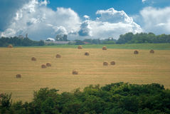 Sheaves in the field. Bale field with clouds on the background Stock Photos