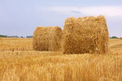 Sheaves of hay. Against a background of the sky stock photo