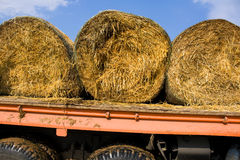 Sheaves of hay Royalty Free Stock Images