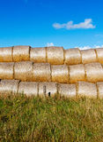 Sheaves of hay in the field in sunshine Royalty Free Stock Photos