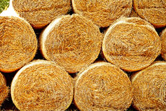 Sheaves of hay Stock Images