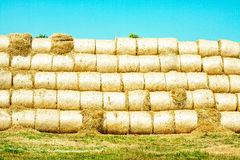 Sheaves of hay. On a picturesque field under a blue sky Royalty Free Stock Photos