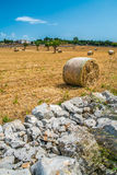 Sheaves of straw, Apulia region Royalty Free Stock Photography