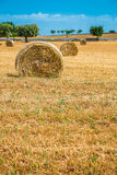 Sheaves of straw, Apulia region Royalty Free Stock Image