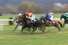 Sheby jail - horse racing in Pragu Stock Photos