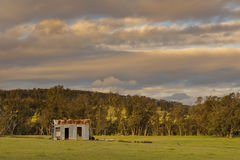 Shed. A small shed still remains standing after years of neglect in the harsh Australian weather Royalty Free Stock Photo