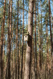 Shed for birds. In the forest Stock Image