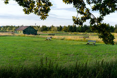 Shed on farmland Stock Photography