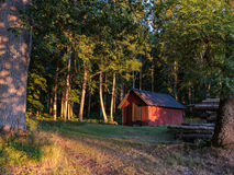 A shed in the forest Stock Images