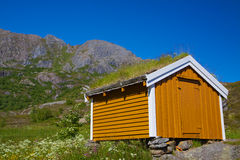Shed with green roof Stock Image