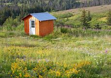 Shed in a meadow Stock Images