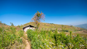 Shed in mountain with blue sky Stock Images