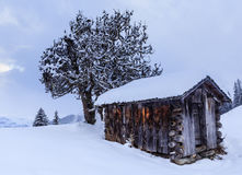 Shed in the mountains. Ski Resort Laax. Switzerland Stock Image