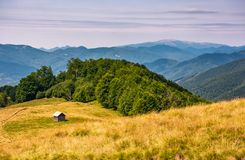 Shed near the forest on a grassy slope. Beautiful summer landscape in Carpathian mountains. Polonina Krasna mountain ridge is seen in a far distance Stock Photo