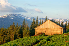 Shed for sheep in Carpathians. Shed for sheep in Ukrainian Carpathians Royalty Free Stock Photography