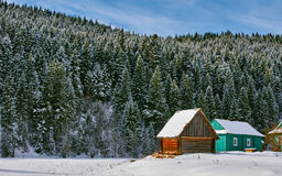 Shed and Snowy Pines Stock Photos