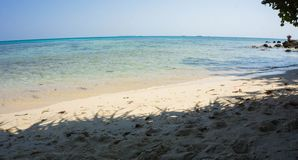 A shed from tree as shadow on the sunny beach on the shore in karimun jawa indonesia. Central java stock images