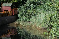 SHED AND VEGETATION REFLECTING IN LAGOON Royalty Free Stock Image