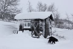 Shed at winter Stock Image