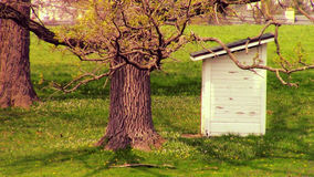 Shed in the Woods Royalty Free Stock Photography