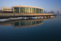 Shedd Aquarium. In Chicago - early morning Royalty Free Stock Images