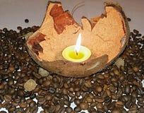 Sheel de noix de coco Photographie stock