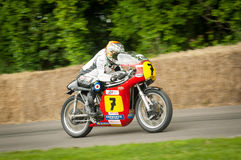 Sheene Suzuki Royalty Free Stock Photo