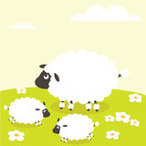 Sheep. Mother and cub cute sheep Stock Photography
