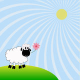 Sheep. White sheep and pink flower Royalty Free Stock Photography