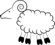 Sheep. On a white background Stock Photography