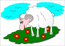 Sheep. Agriculture animal farm grass flowers stock illustration