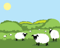Sheep. A hand drawn illustration of a beautiful landscape dotted with sheep under a sunny blue sky Royalty Free Stock Photography