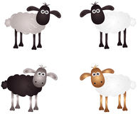 Sheep. Vector illustration shows a merry lamb Stock Images