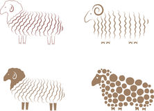 Sheep. Element for design  illustration Royalty Free Stock Photo