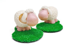 Sheep. This ia a sheep on the grass royalty free stock photography