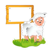 Sheep. Lovely  sheep and  wooden sign  isolated on green grassplot. white background Royalty Free Stock Photo